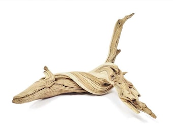 California Driftwood, 12 inches