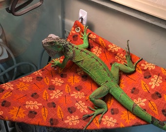 Bearded dragon hammock | Etsy