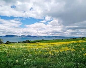 Bear Lake in June. Fine Art Photograph