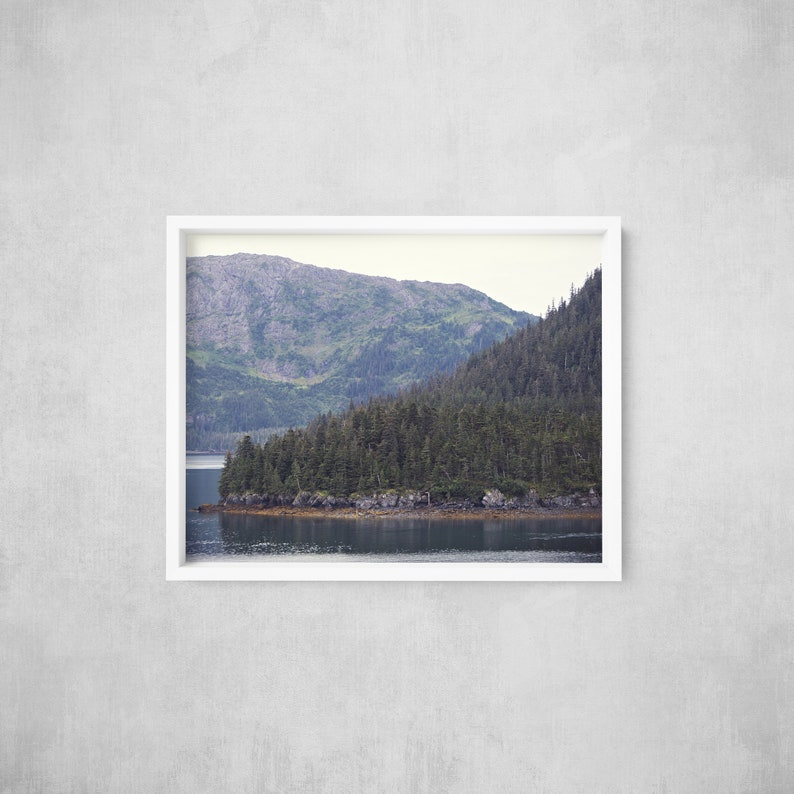 Seaside Forest  Tongass National Forest  Alaska Photography image 0