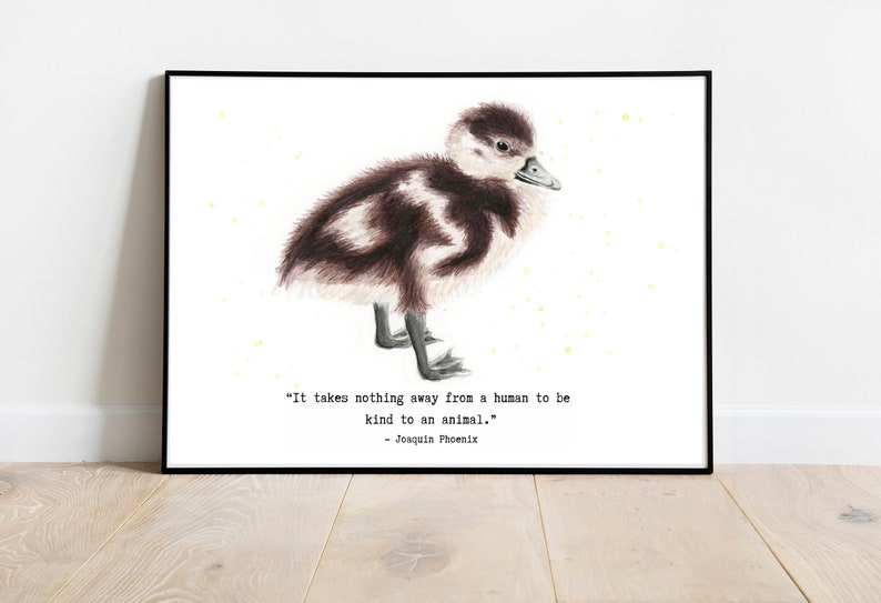 Duckling Watercolour Print with quote by Joaquin Phoenix. image 0