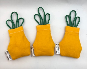 Refillable Catnip Pineapple Cat Toy | Canvas Cat Toy with Organic Catnip and Silvervine