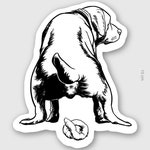 Dog Pooing Transparent Sticker, Gifts For dog Lovers