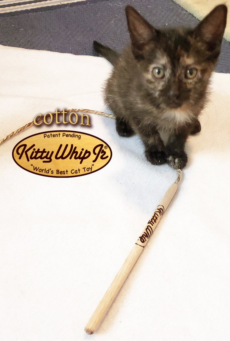 KittyWhip Jr® for itty bitty kitties image 0