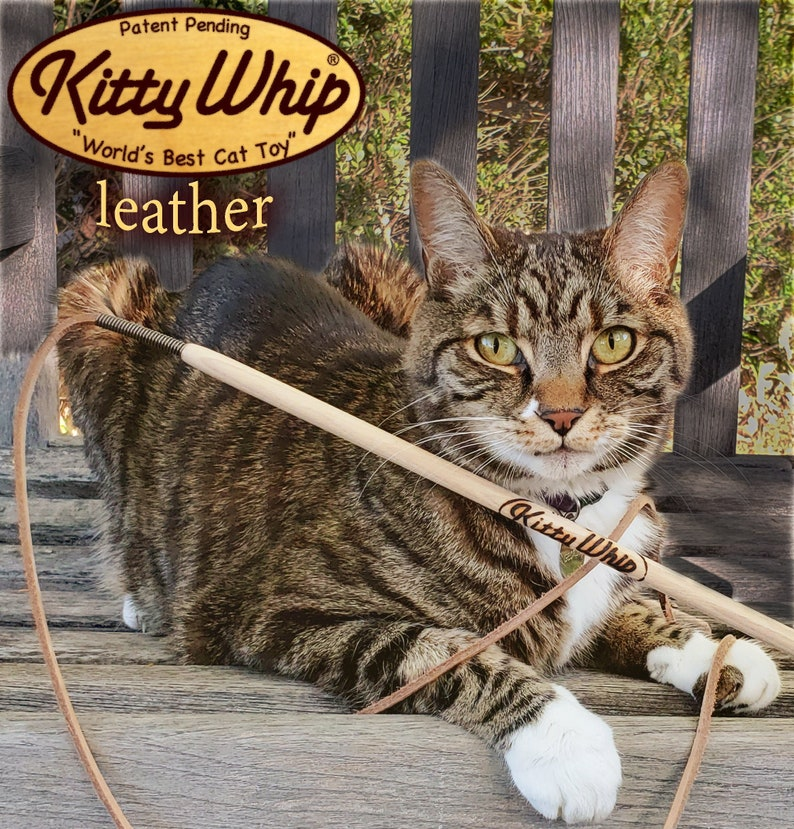 KittyWhip Leather purrfect for little hunters image 0