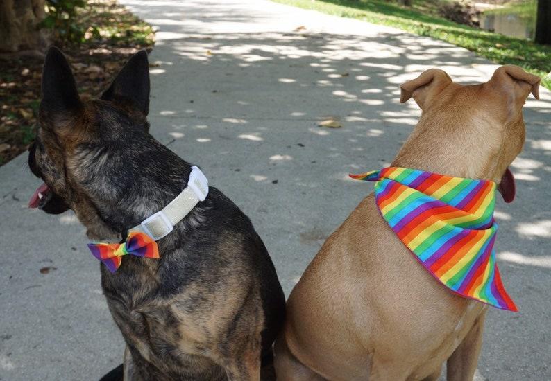 Pride Dog and Cat Bows or Bowties  Rainbow  LGBTQ  Red  Orange  Yellow  Green  Blue  Purple  Dog Mom  Dog Dad