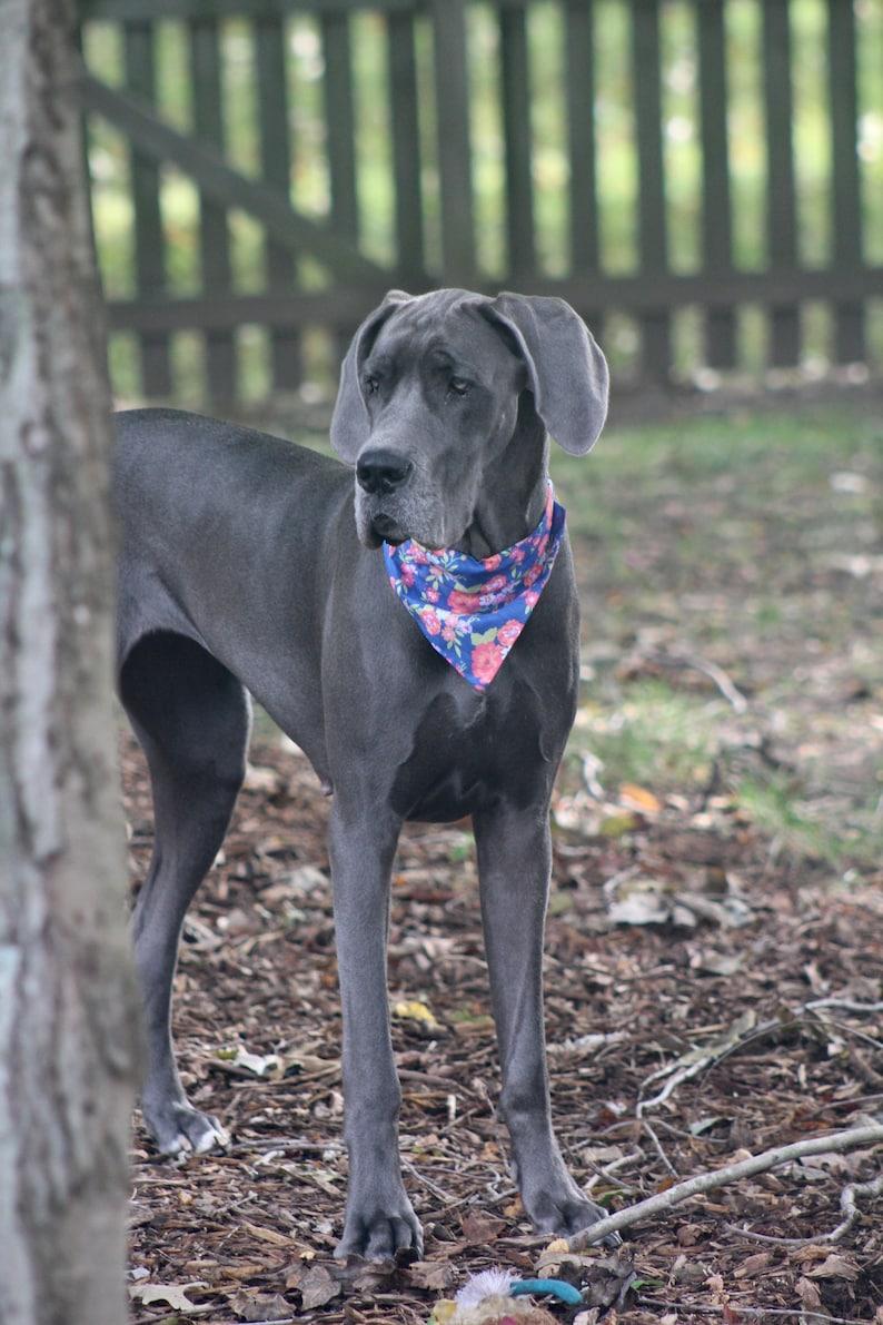 Dog Bandana Willa Grey Multi