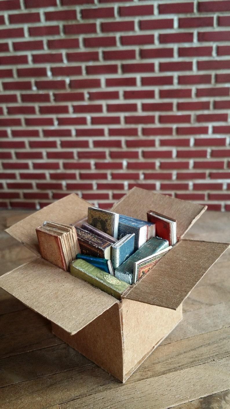 Miniature Books in a Large Cardboard Box