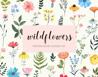 Wildflowers Clipart Watercolor Wild flower Floral Illustration Clip Art  Botanical Printable Meadow Flowers Border Wedding Invitation PNG