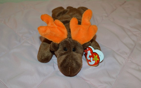 TY CHOCOLATE the MOOSE BEANIE BABY PRICE STICKER MINT with MINT TAG