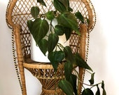 Vintage Rattan Mini Peacock chair- Plant stand or Doll chair- LARGE