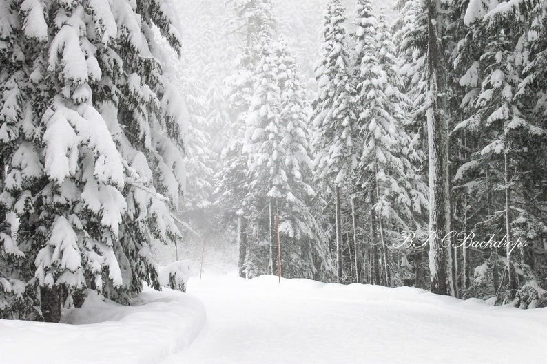 Winter Background Snow Backdrop Winter Christmas Photography Backdrop Digital Download Portrait Winter Wonderland Backdrop Fir Tree