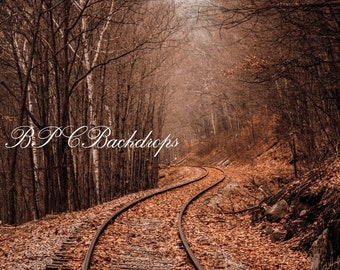 Autumn background / Fall Babckgound / Backdrop / Train Tracks / Perspective Digital Download