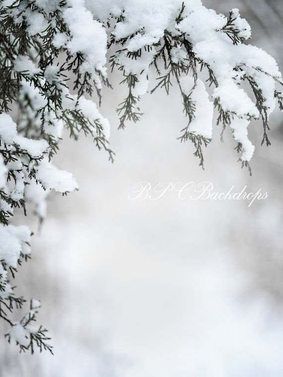 Christmas Background Images Portrait.Winter Photography Backdrop Christmas Background Portrait Background Snow Digital Background