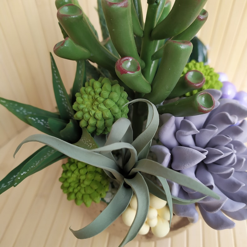 decor handmade exclusive gift interior composition gift succulents composition of succulents cactus ecodecor