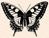 Victorian Swallow-tailed Butterfly (Papilio machaon) Vector Clip Art | Vintage Insect | Instant Download SVG PNG JPG