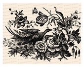 Victorian Pheasant with Butterfly and Flowers Vector Clip Art | Vintage Bird, Floral, Insects | Instant Download SVG PNG JPG