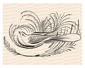 Victorian Bird with Grasses and Blank Space for Text Vector Clip Art | Antique Penwork Flourishing | Digital Instant Download SVG PNG JPG