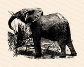 Victorian Elephant Vector Clipart | Antique Vintage Elephant| Instant Download Clipart | SVG PNG JPG