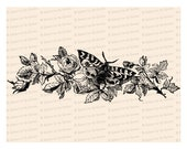 Victorian Moth / Butterfly with Roses Vector Clip Art | Vintage Floral, Insect | Instant Download SVG PNG JPG