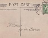 Antique Postcard DOWNLOAD | November 1910 Postmarked Blank Back with Stamp | Edwardian Postcard with Ironton Ohio postmark png jpg digital