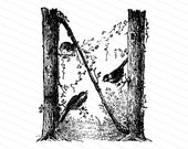 Ornamental Penwork Initial Letter N Vector Clipart    Victorian Nature Capital Letter N, Rustic Woodland Birds Antique Monogram SVG PNG JPG