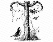 Ornamental Penwork Initial Letter T Vector Clipart    Victorian Nature Capital Letter T, Rustic Woodland Birds Antique Monogram SVG PNG JPG