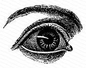 Vintage Victorian Eye Vector Clipart   Antique Human Eye Instant Digital Download SVG PNG JPG