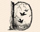 Ornamental Penwork Initial Letter D Vector Clipart    Victorian Nature Capital Letter D, Rustic Woodland Birds Antique Monogram SVG PNG JPG