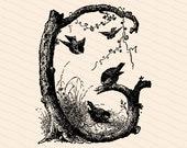 Ornamental Penwork Initial Letter G Vector Clipart    Victorian Nature Capital Letter G, Rustic Woodland Birds Antique Monogram SVG PNG JPG