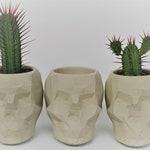 Geometric Concrete Skull - Plant Pot/Candle Holder