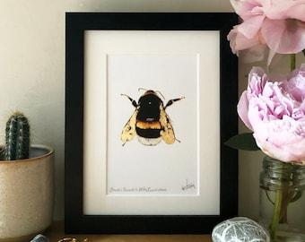 Framed Gold Leaf Intricate Bumblebee, Signed Art Print