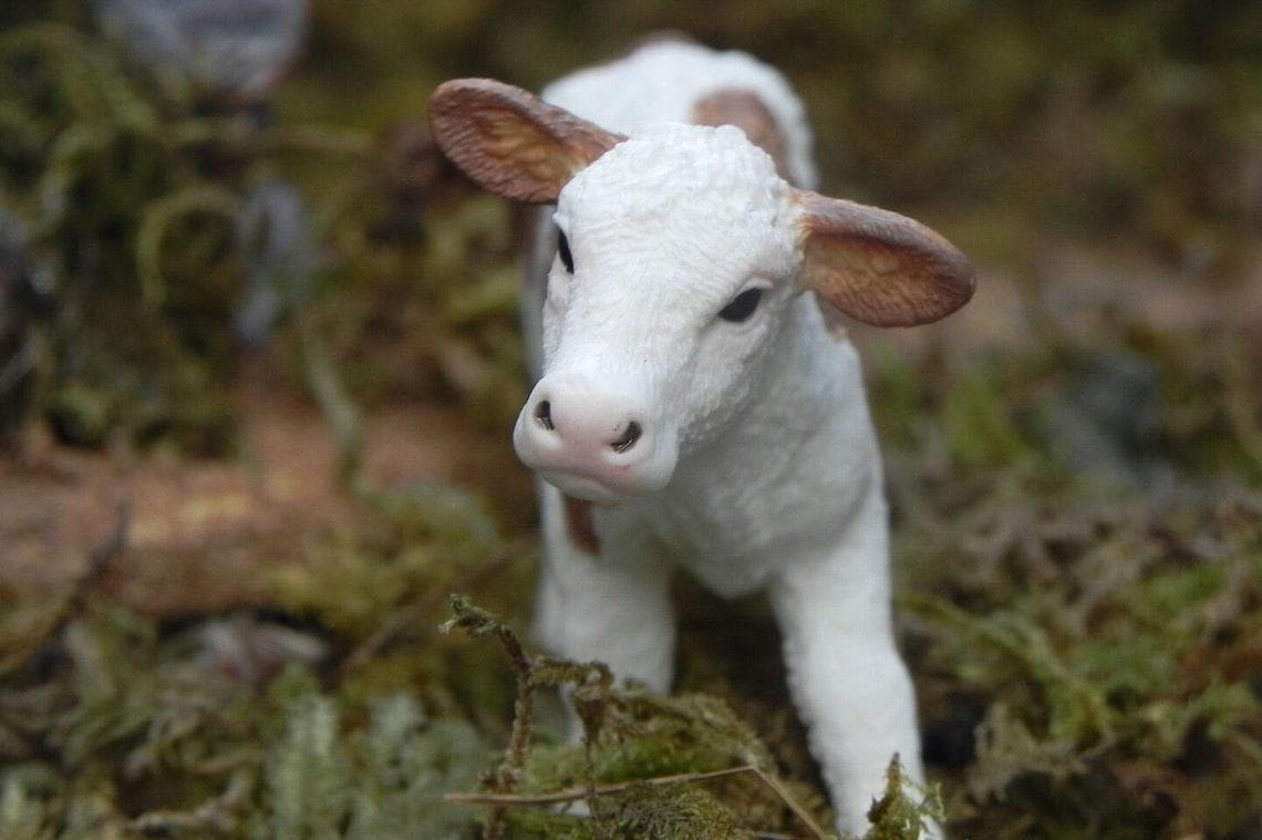 Schleich Calf Figurine Farm Nativity Scene Animals Pesebre image 0