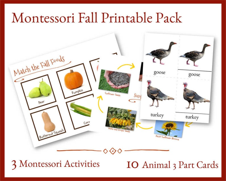 image about Fall Printable Activities identify Montessori Slide Printable, Printable Young children Video game, Report Folder Video game, Tumble Game Pack