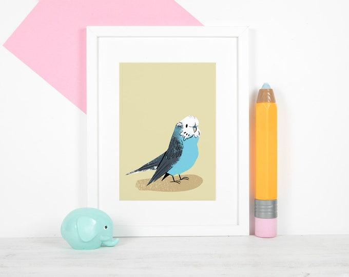 "Blue Budgie 5x7"" Print / Lustre, Satin, Photo Print, Budgie, Budgerigar, Parakeet"