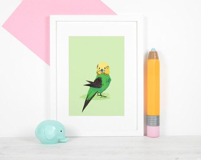 "Green and Yellow Budgie 5x7"" Print / Lustre, Satin, Photo Print, Budgie, Budgerigar, Parakeet"