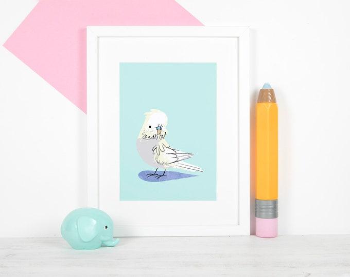 "White Budgie 5x7"" Print / Lustre, Satin, Photo Print, Budgie, Budgerigar, Parakeet"