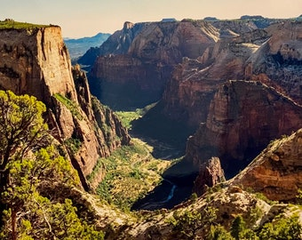 The Cliffs of Zion