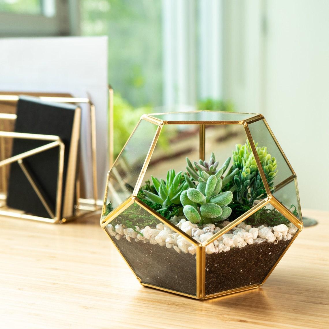 Glass Geometric Terrarium  Succulent Planter  Brass image 0