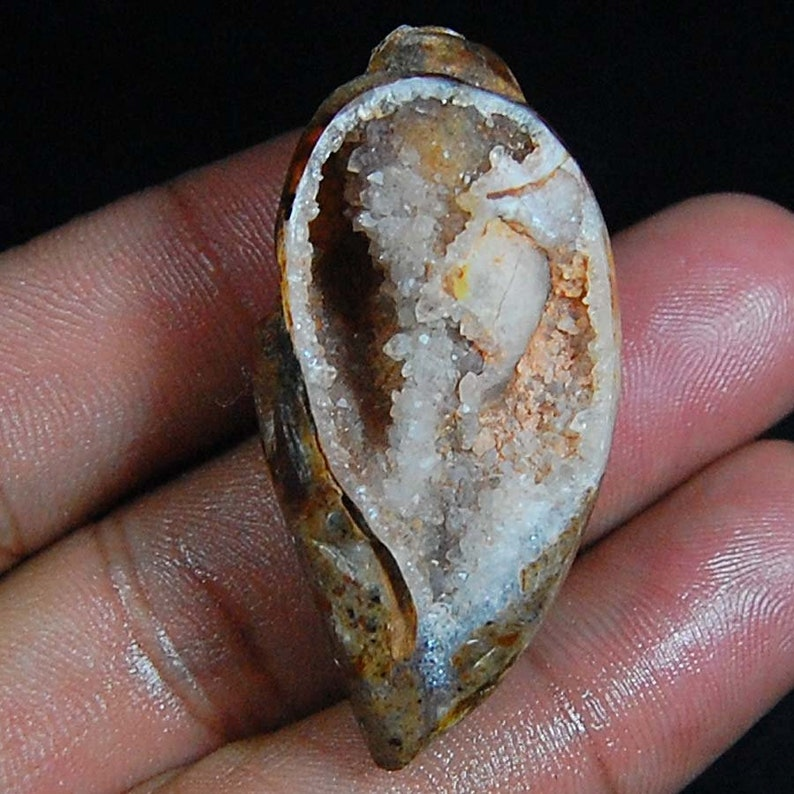 78 Ct AAA Old Vintage 100/% Natural Fossilized Shell Druzy Natural Gemstone Fancy Shape S 42X20X12 MM Loose Gemstone Cabochon Crystal