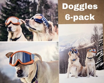 Doggles 6-pack 5x7 greeting cards