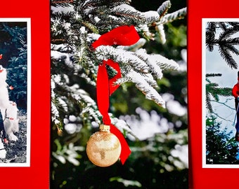 Mountain Christmas 6 card pack