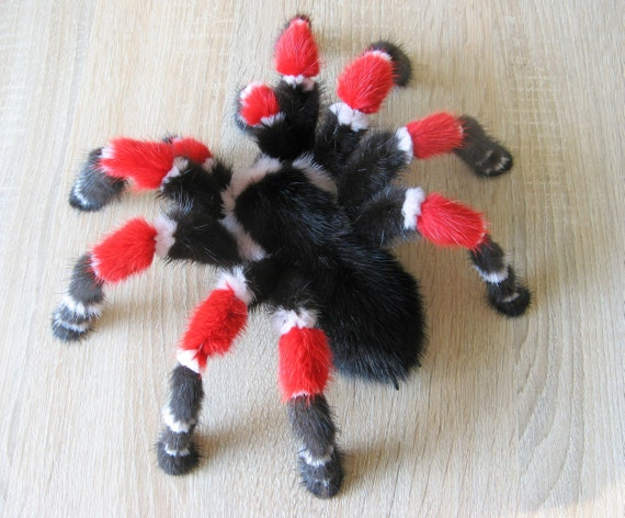 Exotic Spider Taxidermy Curiosities Oddities Tarantula Art Doll Halloween Decoration Gothic Decor Scary Horror Monster Insect Fake Bug
