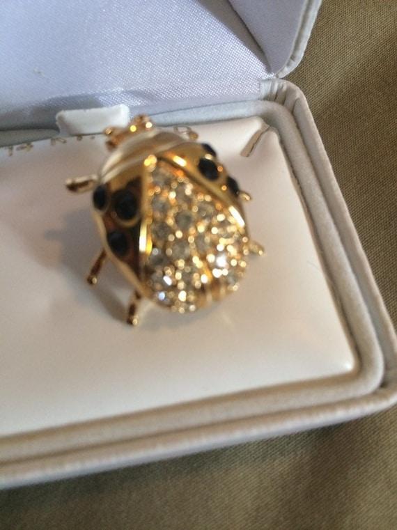 Ivana Gold Ladybug