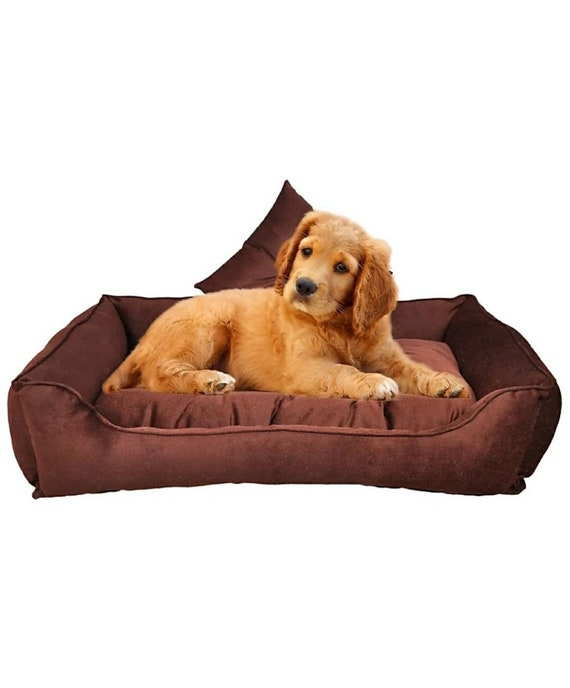 Groovy Pet Bed Pet Bed With Removable Cover Pet Sofa Dog Couch Cat Bed Dog Bed Dog Sofa Cat Jumbo Dog Bed Small Dog Bed Custom Dog Bed Ibusinesslaw Wood Chair Design Ideas Ibusinesslaworg