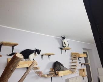 cat shelves etsy rh etsy com modern cat wall shelves DIY Cat Furniture