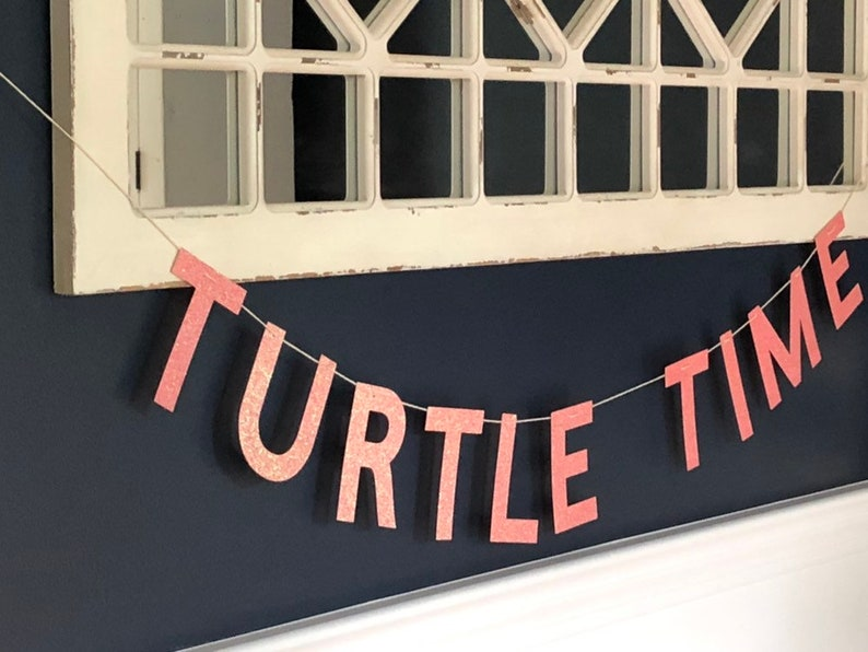 Turtle Time Banner