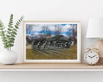 Town Park - Athletics | Aurora 1920s & Now - Print #5 | Poster - Wall Art - Home Decor - Digital Print - Then/Now Photography