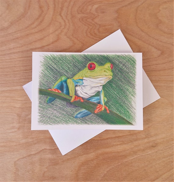 Note Card - Red Eyed Tree Frog - Hand Drawn Pencil Sketch
