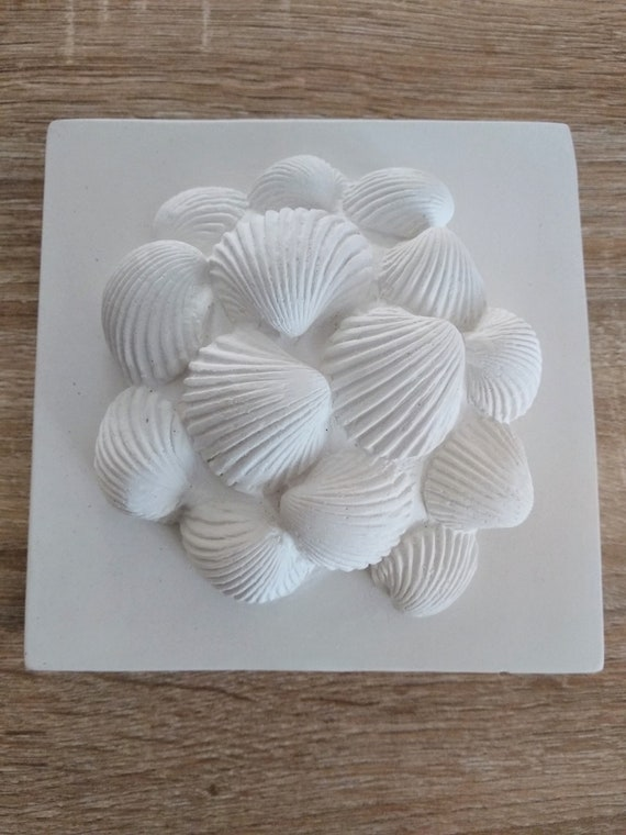 Artistic painting of sea shell plaster, original wall sculpture, marine  decoration of plaster